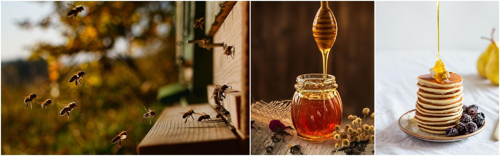 Mel: nutricional pena médica, como também de propriedades residenciais de mel