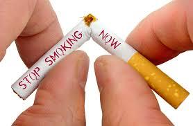 Anti-Smoking Magnet - celeiro