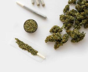 Green Leaf CBD Oil - funcionas - como tomar - ingredientes