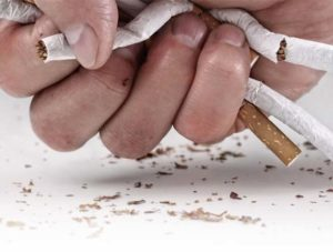 Nicotine Free - onde comprar - Portugal