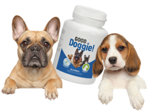 Good Doggie - como tomar - ingredientes - funcionas