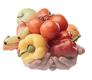 Testobolon - como tomar - ingredientes - funcionas